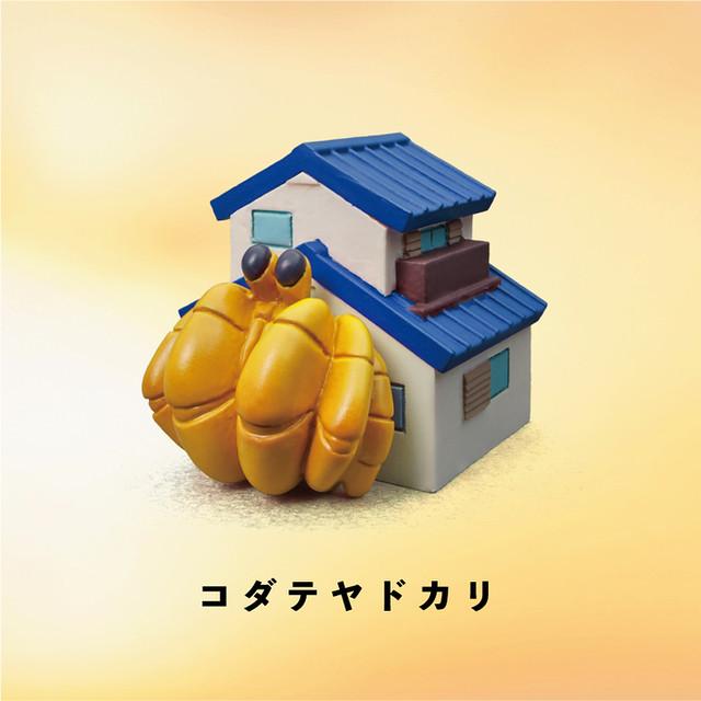 「五種款式全公開!」這些寄居蟹的家也太豪華了吧! 熊貓之穴【寄居蟹所有房產】ヤドカリ物件 奇趣登場~~