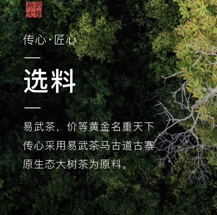 """2019 DaYi """"Chuan Xin"""" (Telesthesia) Cake 357g Puerh Raw Tea Sheng Cha"""