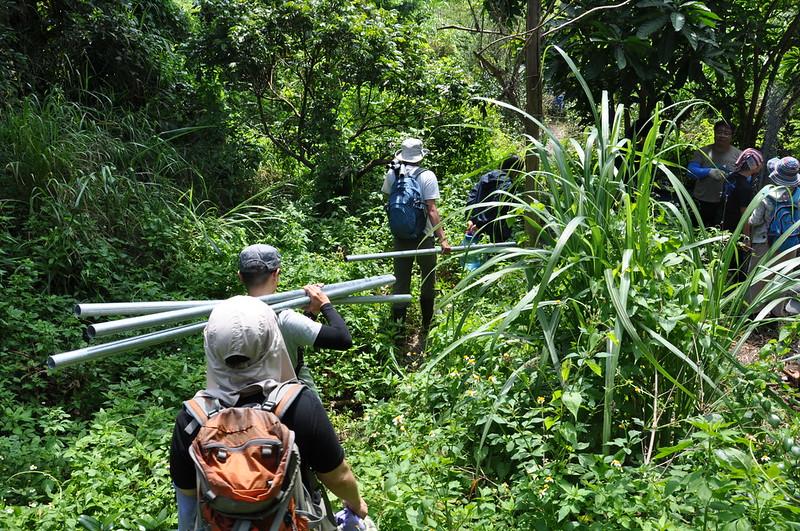 志工們跟著石虎保育協會工作專員陳祺忠的帶領,扛著器材走往地處郊野的雞舍。孫文臨攝