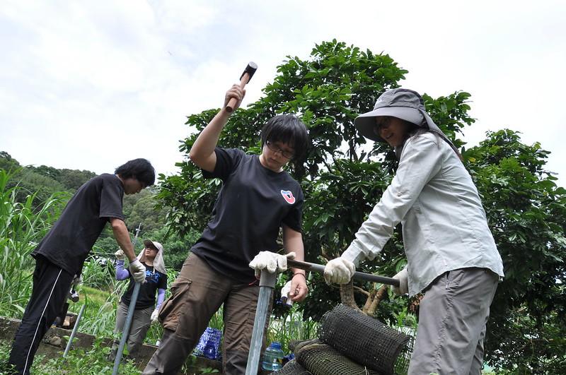 志工們利用鐵鎚與特製的固定器將鐵樁敲擊入土固定。孫文臨攝