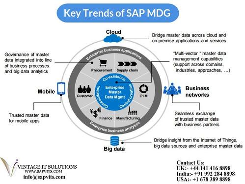 SAP MDG Training in Bangalore | SAP MDG Online Training