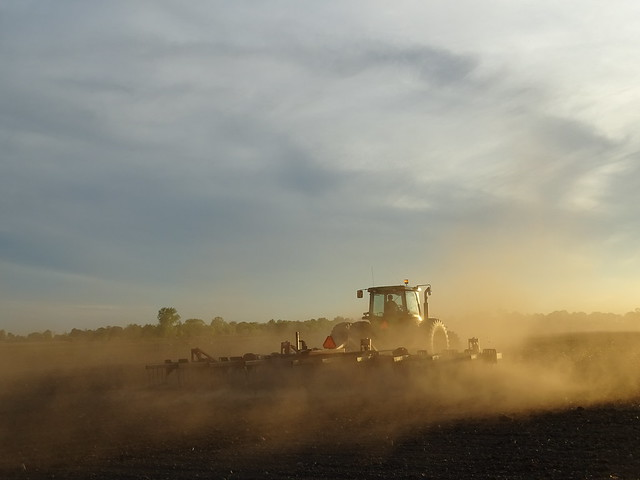 Planting into the sunset hours.
