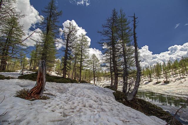 Lago Nero - Parco Naturale Alpe Devero (Italy)