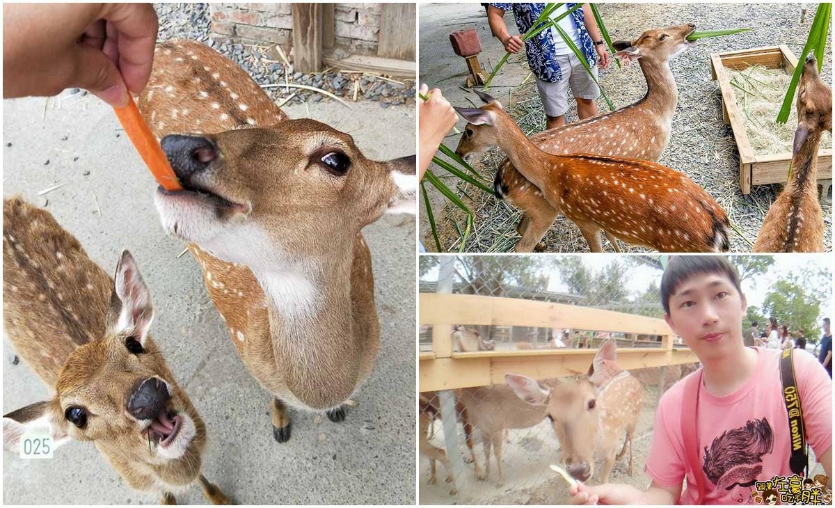 恆春景點-鹿境Paradise Of Deer-0