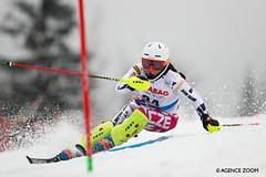 Světové poháry 2019/20 zavítají i do Česka
