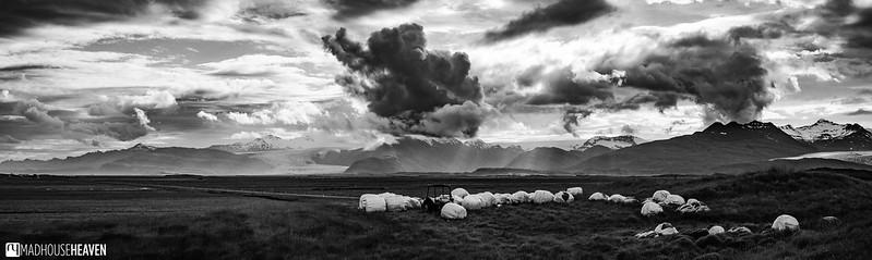 Iceland - 3018-Pano