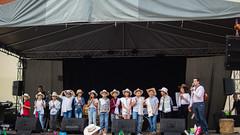 Apertura Fiesta de las Artes - Ft- Fabián Rendón M (53)