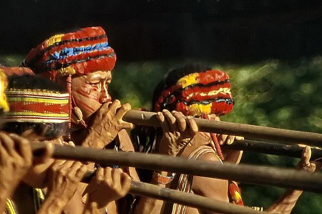 Amazon blow gun hunters