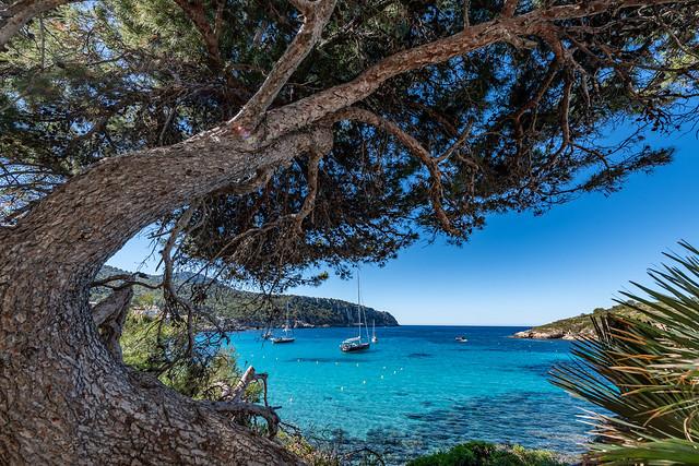 Mallorca - Sant Elm - 0664