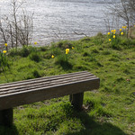 Bench at riverbank Preston