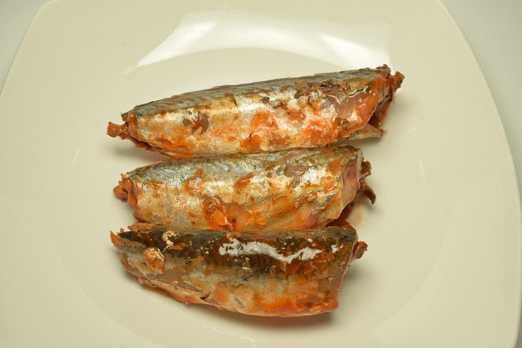 沙丁魚罐頭裡裝了小鯖魚幼魚