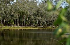 Splitters Creek,Bundaberg