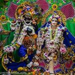 ISKCON Vrindavan Deity Darshan 11 June 2019