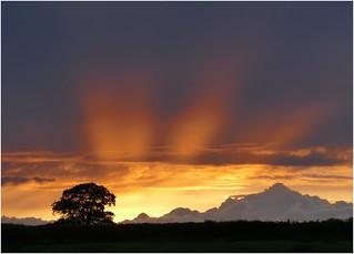 Sunset at Oak Farm