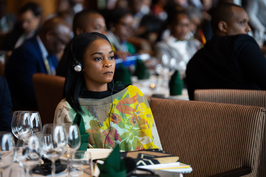 Malabo AfDB Annual Meetings Day 1 - Special Event Luncheon: African Economic Outlook