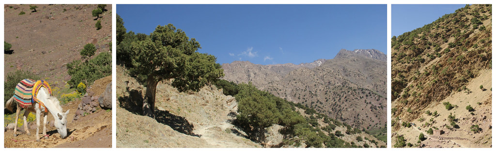 Approaching the village of Tamssoult, Mount Toubkal trek