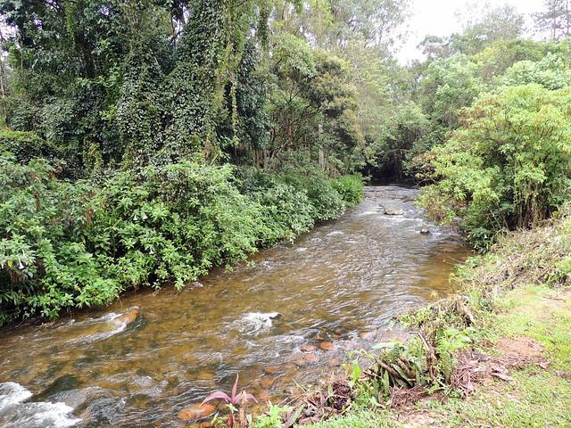 Maringá river. Maringá, Minas Gerais. Brazil.