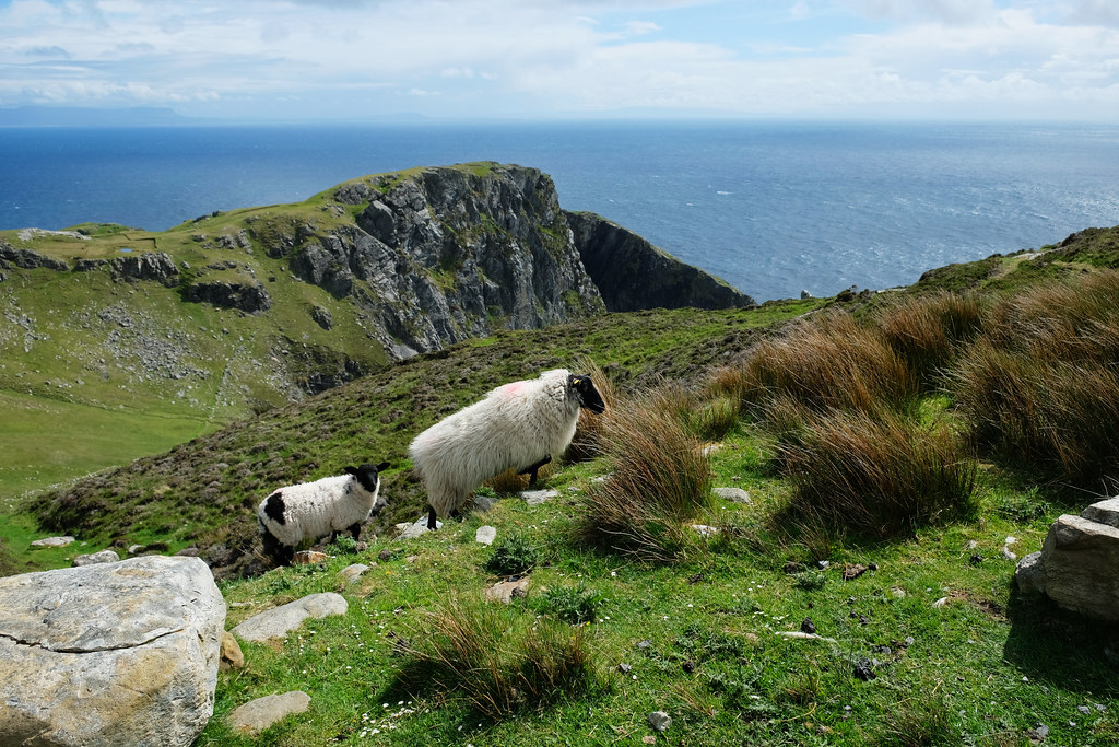 Hiking at Slieve League Cliffs, Ireland