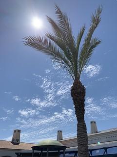 In The Warm Algarve Sun