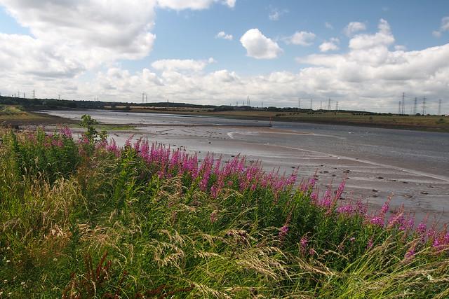 The River Blyth