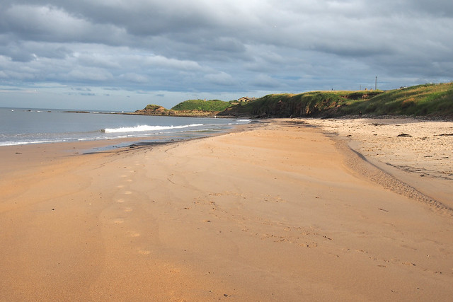 The beach at Cresswell