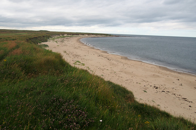 The beach at The coast north of Newbiggin Moor