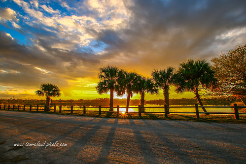 sun sunset trees palms palmtree pond lake water sky clouds cloudy weather nature mothernature colorful shadow shadows fence outdoors fortpierce florida usa