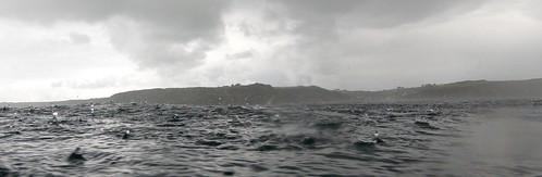 Heavy Rain at Sea