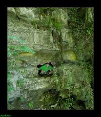 Source du Rocher de Ravonnet - Villers Sous Chalamont