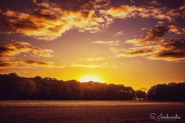 Sweet Sunset Light