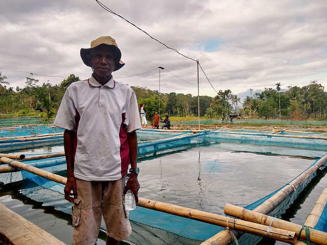 Fish farmer Jorge dos Santos, 58, of Leohitu village, Timor-Leste. Photo by Kate Bevitt.
