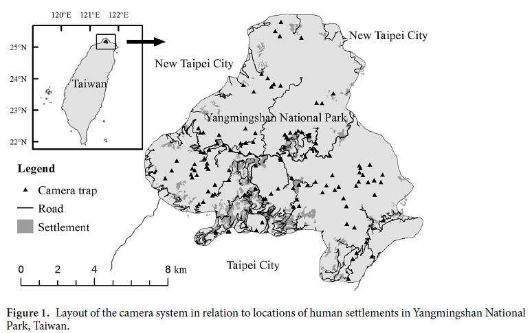 此研究地點為陽明山國家公園,從圖中可以看到此國家公園被新北市和台北市圍繞。▲的位置即自動相機的架設地點,總共121台;深灰色的區塊是人類活動的地區。