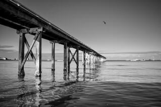 Sorrento Pier ⚓