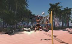 Volleyball fun.