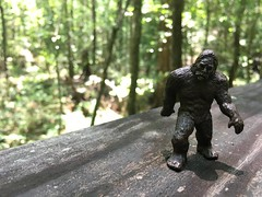 travels with Bigfoot (& friends)