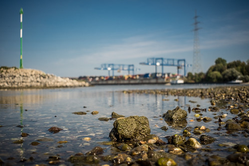 harbour bokeh