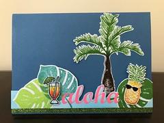 Aloha V2