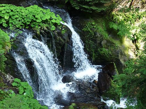 """Bílá Opava: """"Náročná turistická stezka"""" k Velkému vodopádu"""