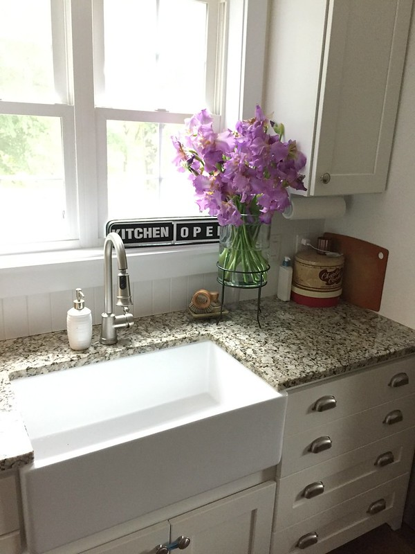 farmhouse sink with purple iris