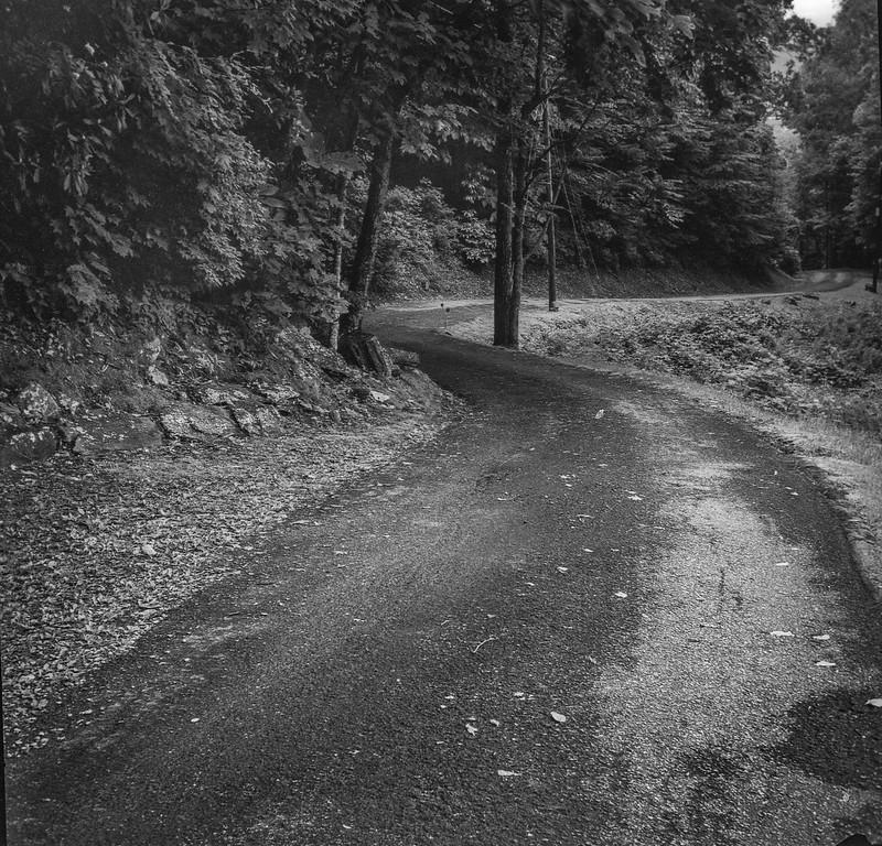 mountain road, single lane, winding, Lakey Gap Heights, Black Mountain, NC, Bencini Koroll, Ilford FP4+, HC-110 developer, 6.10.19