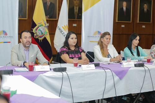 REUNIÓN DE TRABAJO DEL GRUPO PARLAMENTARIO POR LOS DERECHOS DE LAS MUJERES. QUITO, 12 DE JUNIO 2019.