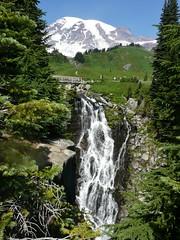 Myrtle Falls #2 2014