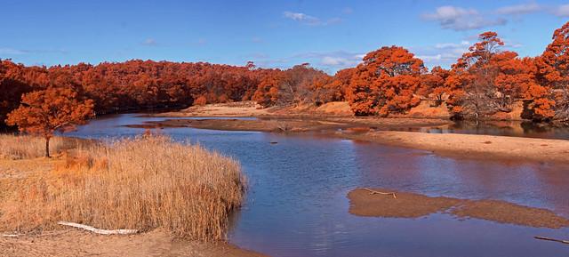 Murrah River panorama
