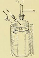 This image is taken from Page 124 of Emil du Bois-Reymond's Vorlesungen über die Physik des organischen Stoffwechsels