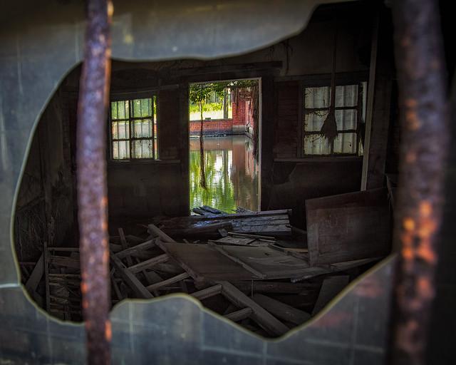 靈魂の窗~~#52