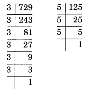 Exponents and Powers Class 7 Extra Questions Maths Chapter 13 Q11