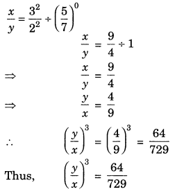 Exponents and Powers Class 7 Extra Questions Maths Chapter 13 Q20.1