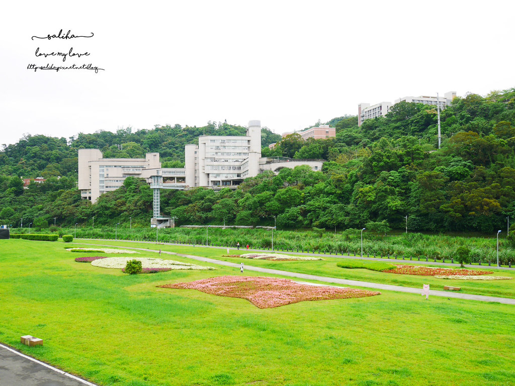 台北文山區政大附近踏青親子景點道南河濱公園 (6)