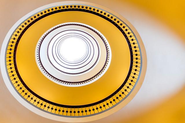 Inside an egg