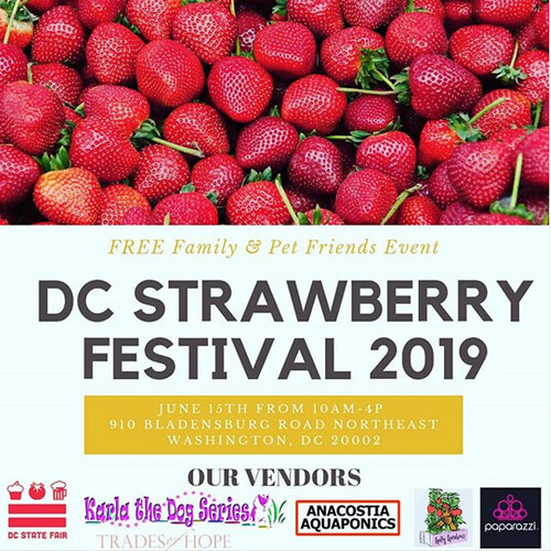 Celebrate Summer at Cultivate the City's DC Strawberry Festival this Saturday (6/15)